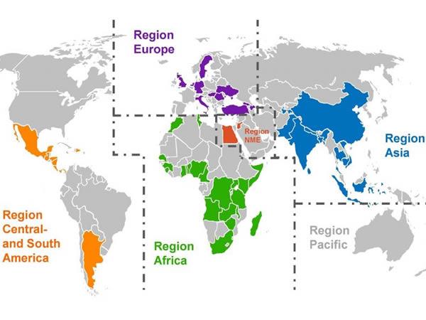 AMAIDI weltweit